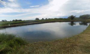 18 Maldeco Aquaculture
