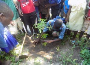 21 Planting
